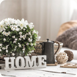 Category Home and Living